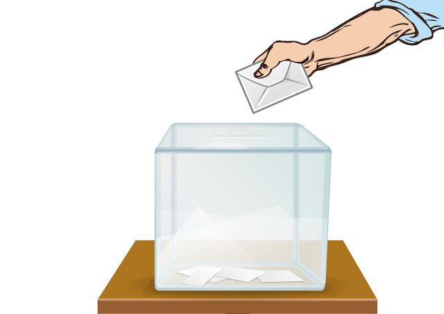 Hlasování volby