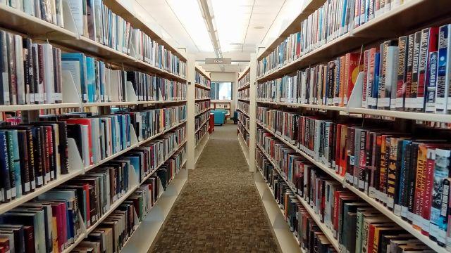 Dnes najdete v knihovně mnoho knih, které jsou skvělé.
